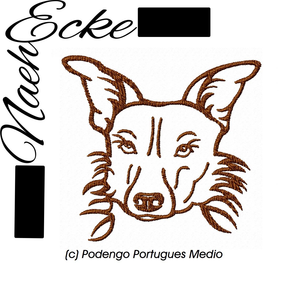 Podengo Portugues Medio