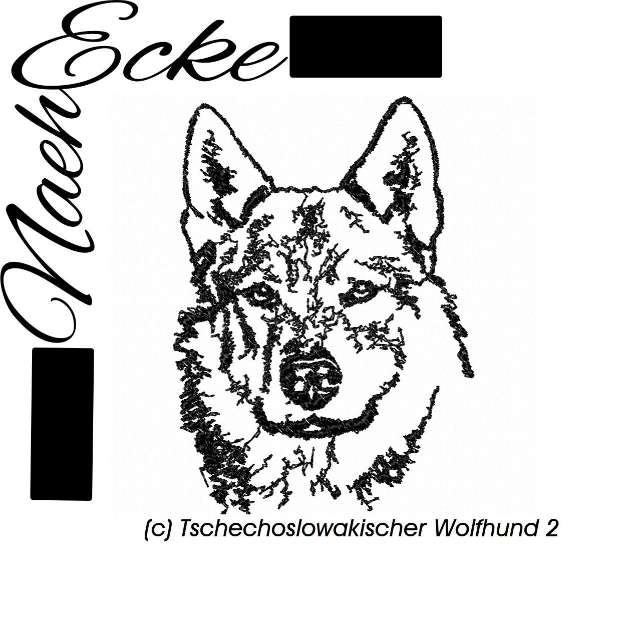 Tschechoslowakischer Wolfhund 2