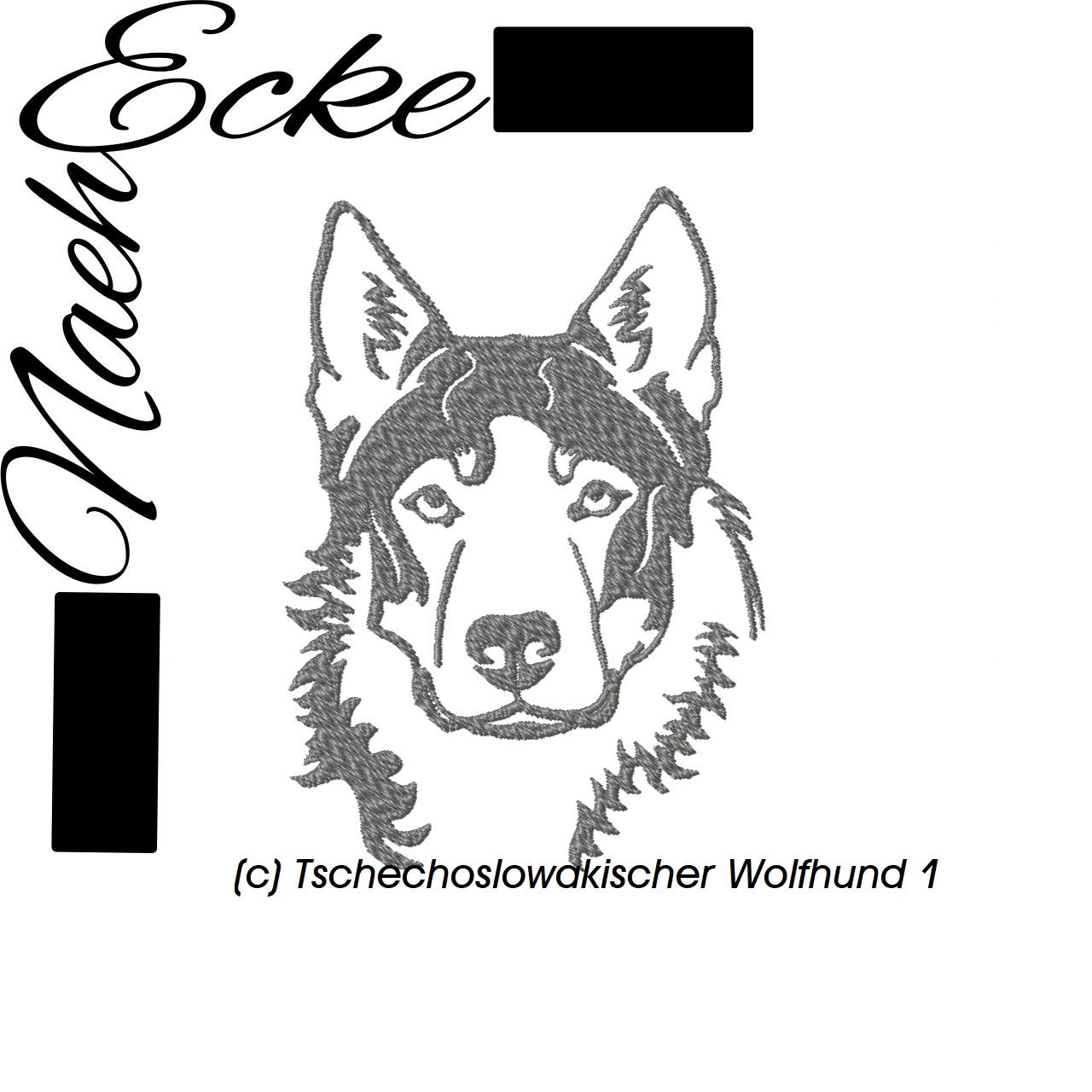 Tschechoslowakischer Wolfhund 1