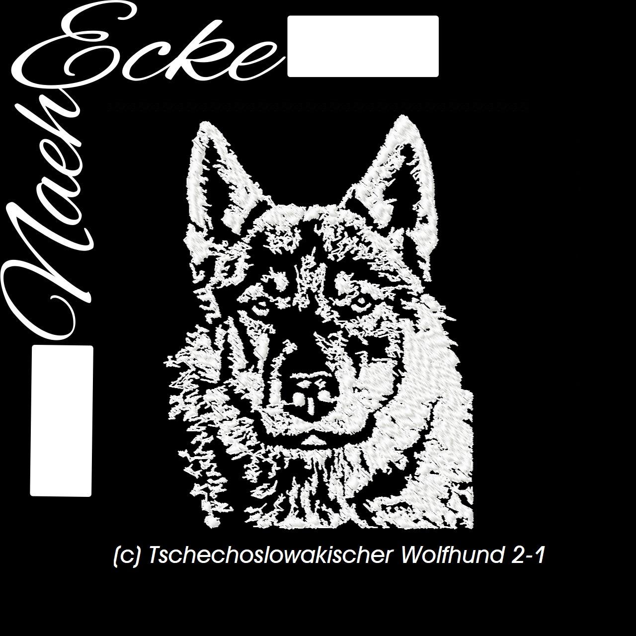 Tschechoslowakischer Wolfhund 2-1