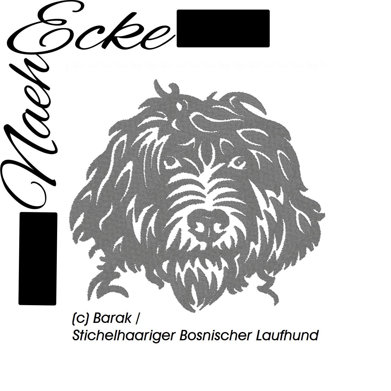 Barak / Stichelhaariger Bosnischer Laufhund
