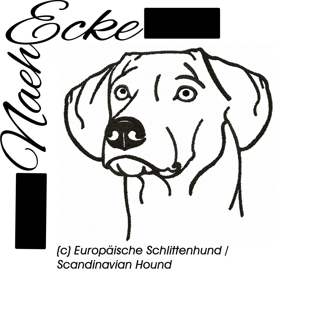 Europäische Schlittenhund / Scandinavian Hound