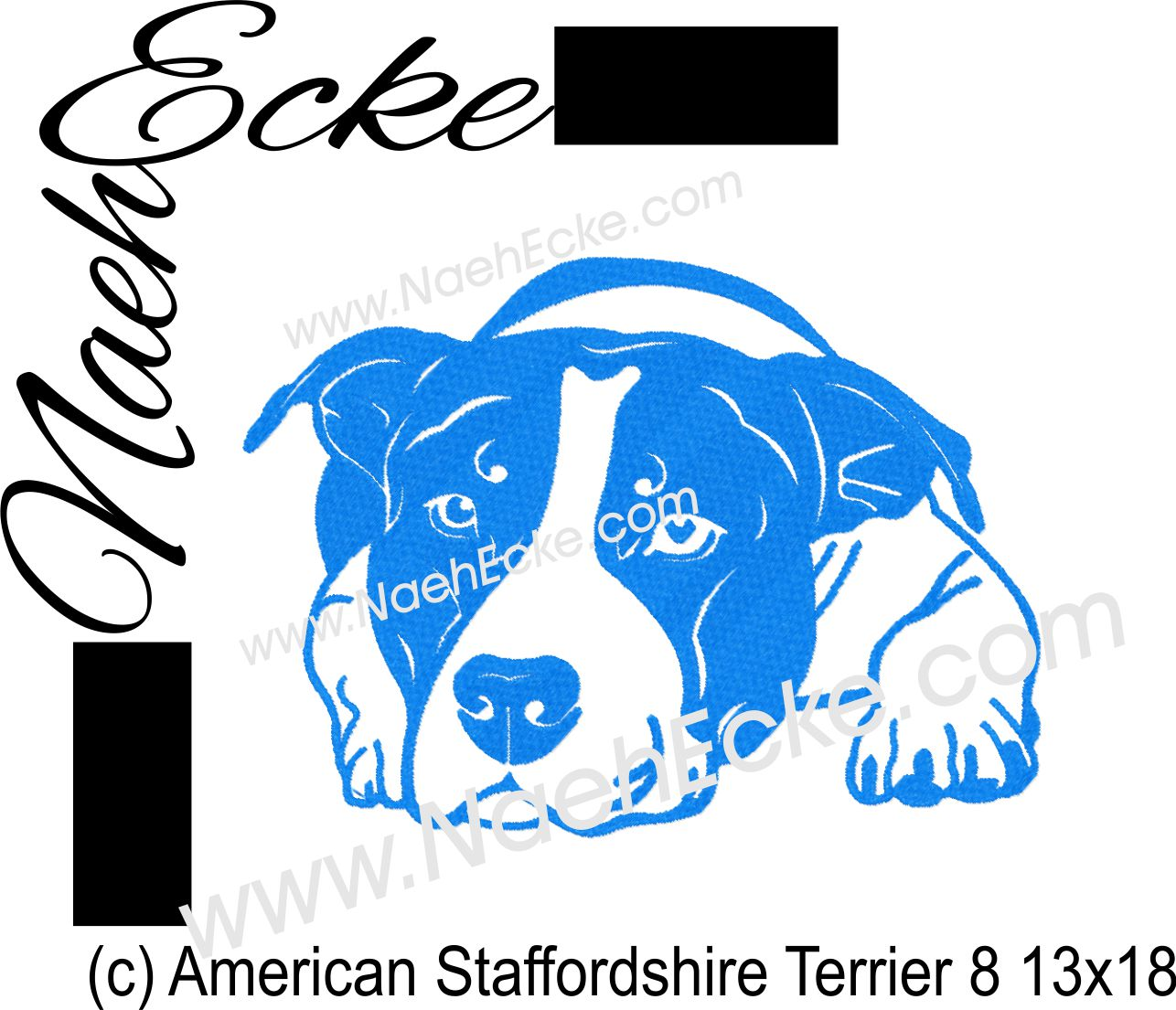 American Staffordshire Terrier 8