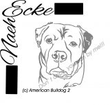American Bulldog 2