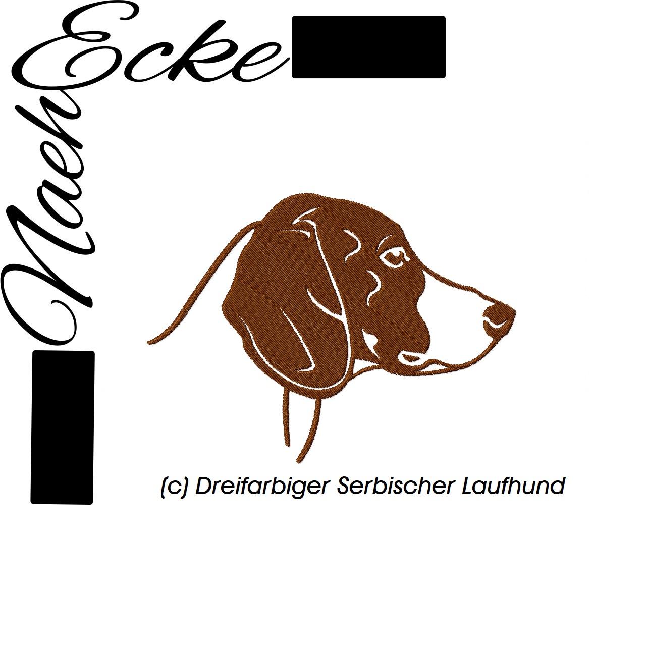 Dreifarbiger Serbischer Laufhund