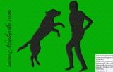 Hundesport Dogdance