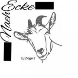 Schafe / Ziegen