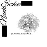 Stickdatei Bolonka Zwetna Nr. 6 10x10 Doodle