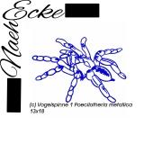Stickdatei Vogelspinne 1 Poecilotheria metallica 13x18
