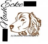 DATEI Deutscher Wachtelhund Nr. 1 SVG / EPS