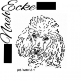 Embroidery Poodle 4x4!