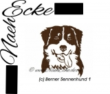 Stickdatei Berner Sennenhund Nr. 1 10x10